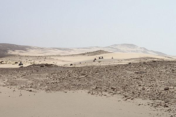 Boa Vista, l'île aux dunes21