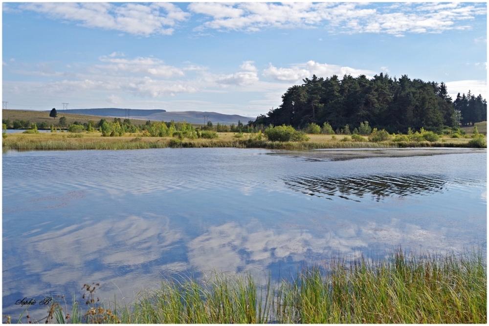 Lac de Bourdouze  (63 )