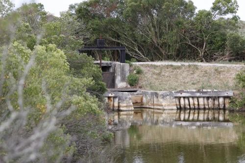 L e Teich Arcachon