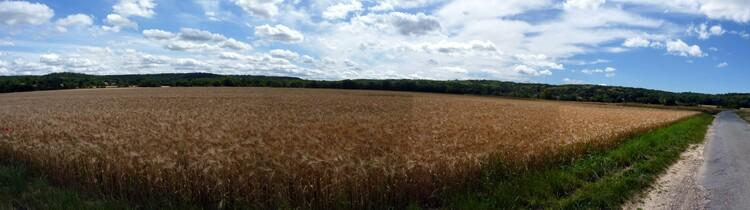 La Beauce en Essonne