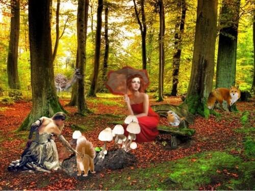 Forêt magique en fond de blog