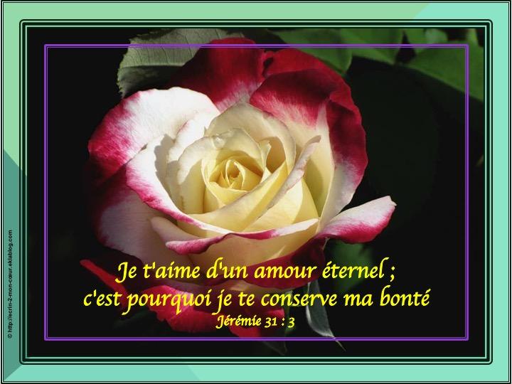 Je T Aime D Un Amour éternel Jérémie 31 3 Ecrin2moncoeur