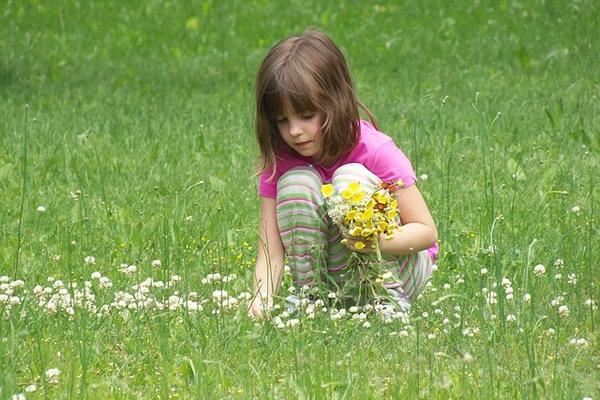 Fillette cueillant des fleurs sauvages dans une prairie