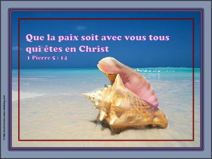 Que la paix soit avec vous tous qui êtes en Christ - 1 Pierre 5 : 14