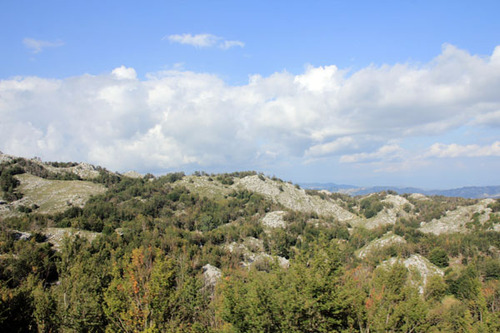 8-Autour de Cetinje et côte montenégrine