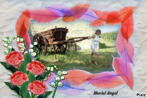 PIXIZ_-2--11--Muriel-Angel.jpg