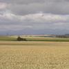 La plaine de la Limagne au nord de Clermont Ferrand