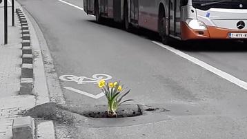 Fleurissez-vous la vie en ville ...
