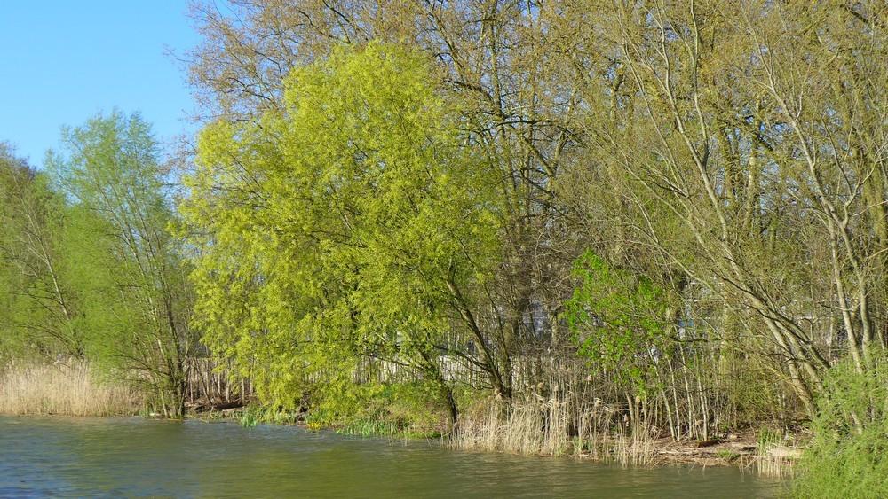 Les quais de Bordeaux, rive droite...