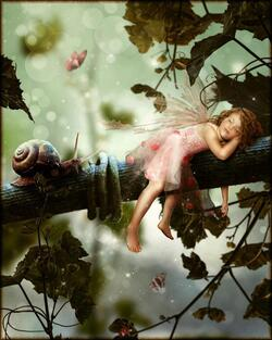 - Un beau petit monde