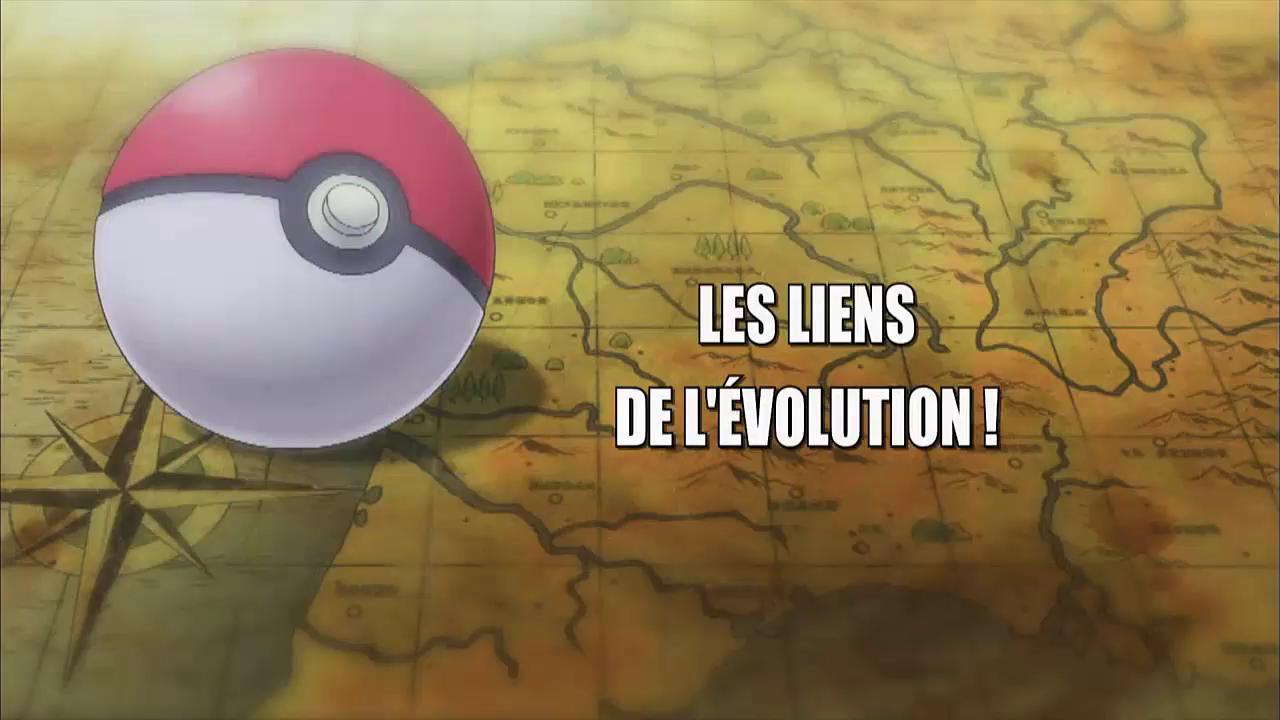 27 Les liens de l'évolution !