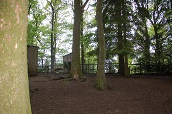 Parc animalier Bouillon 2013 enclos 233