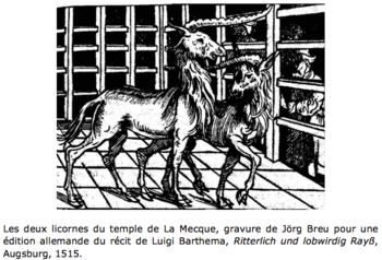 licornes de La Mecque, Bruno Faidutti 1996