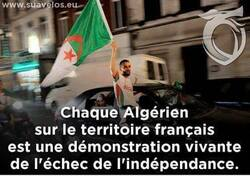 Immigration d'Algérien en chaîne sur l'Europe ...