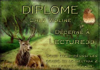 DIPLOMES VIOLINE