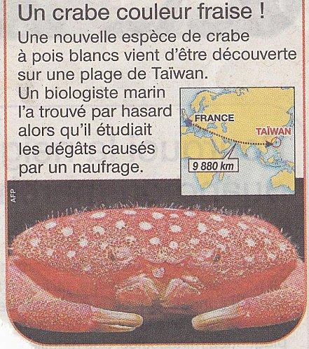 crabe-fraise.jpg
