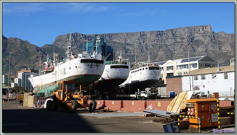 Rapide tour sur le Waterfront - Cape Town - Afrique du Sud