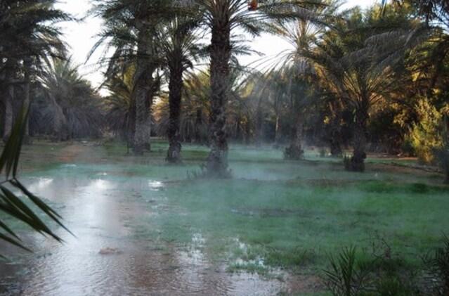 Source d'eau chaude soufrée  Ksar Ghilane