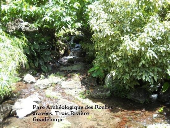 parc archéologique des roches gravées (trois rivière).j (8)