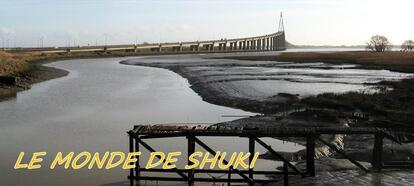 LE MONDE DE SHUKI