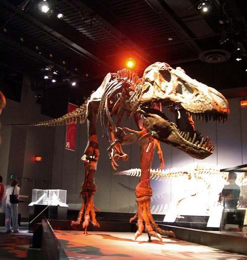 Patrimoine mondial de l'Unesco : Le parc provincial des Dinosaures - Canada -