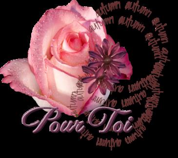 Pour Toi mon Ami(e)