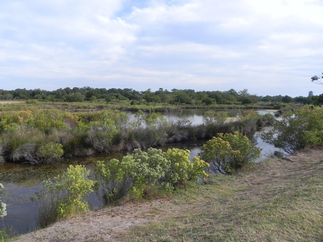 Le Marais d'Audenge dept 33