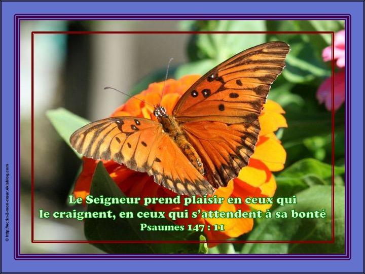 Le Seigneur prend plaisir en ceux qui le craignent - Psaumes 147 : 11