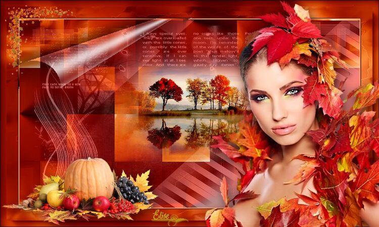 Couleurs d'automne de  Belle de nuit