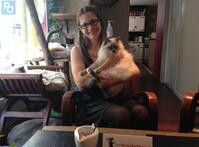 Le Chat L'Heureux, bar à chats sur Nantes