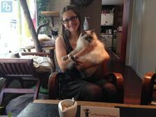 Mon bar à chats préféré