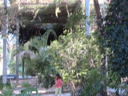 Les jardins le long du Tage