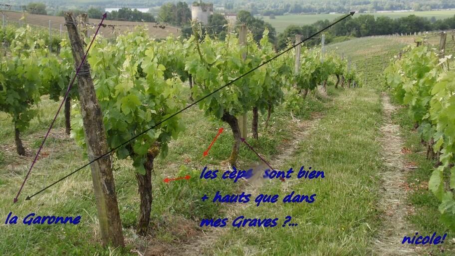 Premières Côtes de Bordeaux !
