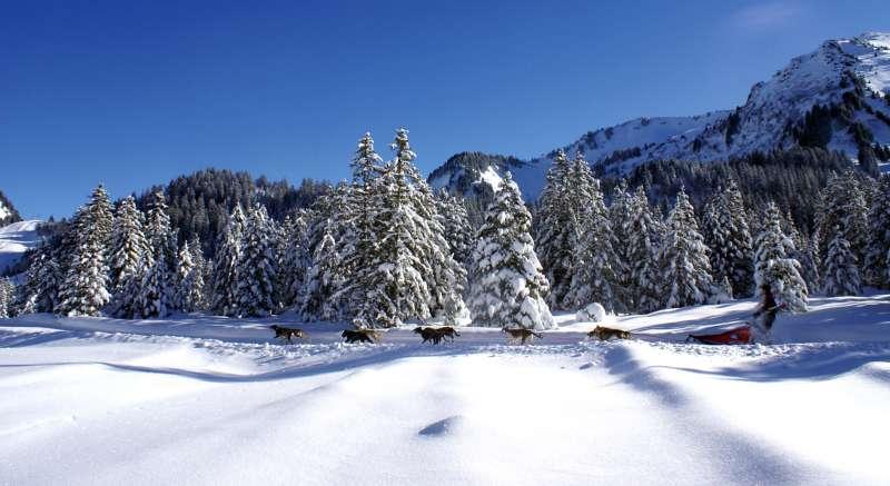 passage-de-la-grande-odyssee-savoie-mont-blanc-a-sommand2-36