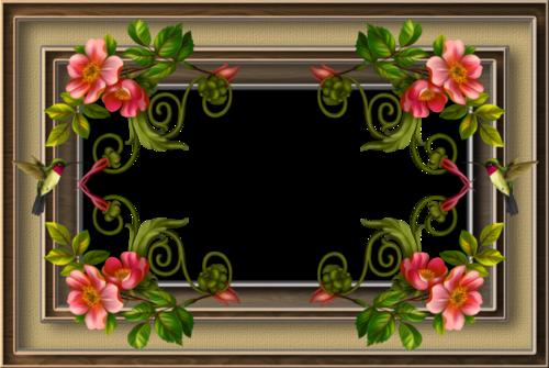 Frames flowers PNG