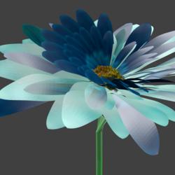 blue daisy profile