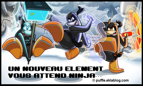 Beta test de card-jitsu neige