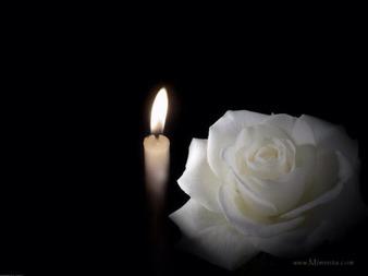 """Résultat de recherche d'images pour """"rose blanche et bougie"""""""