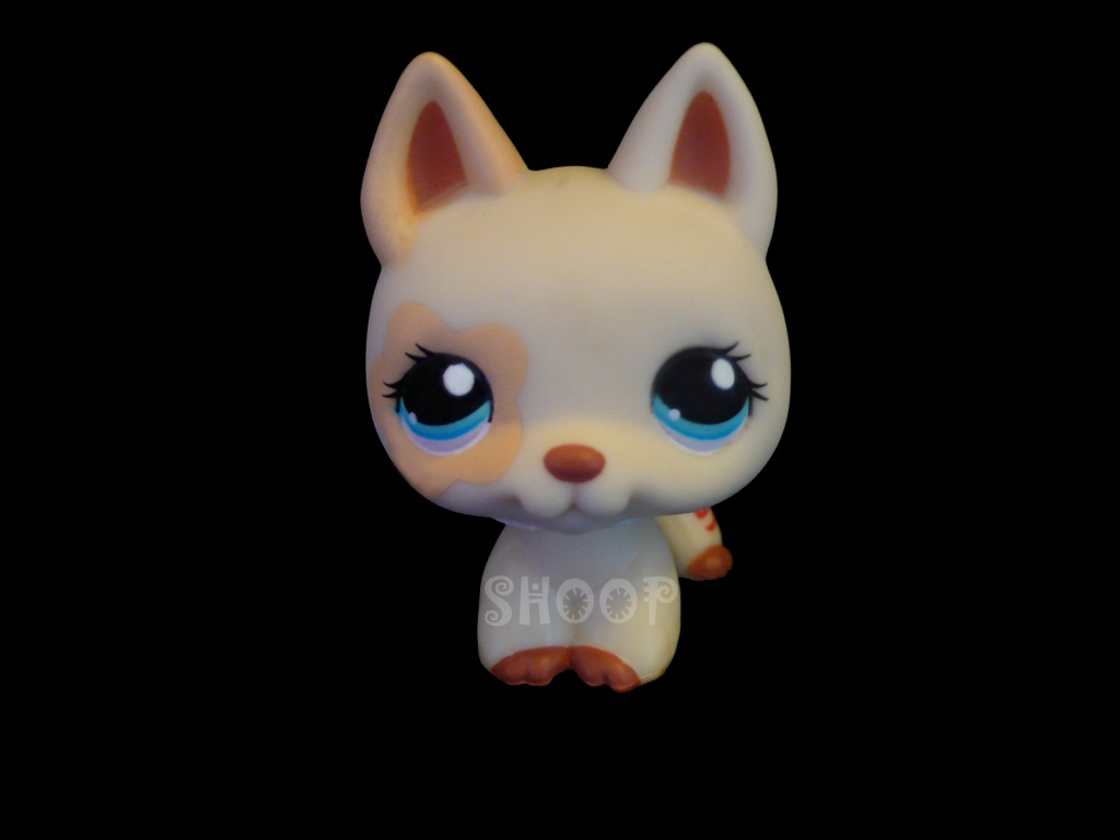 LPS 1169
