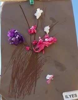 C'est le printemps: le prunus selon les PS de N.