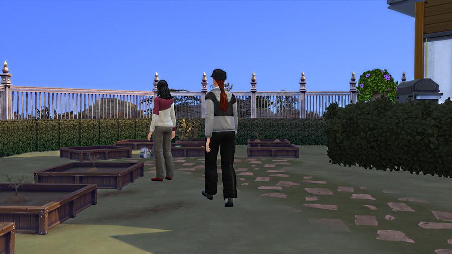 Chapitre 1 : Agénésie