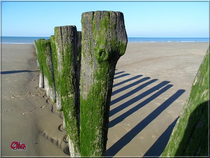 Du sable, des plages