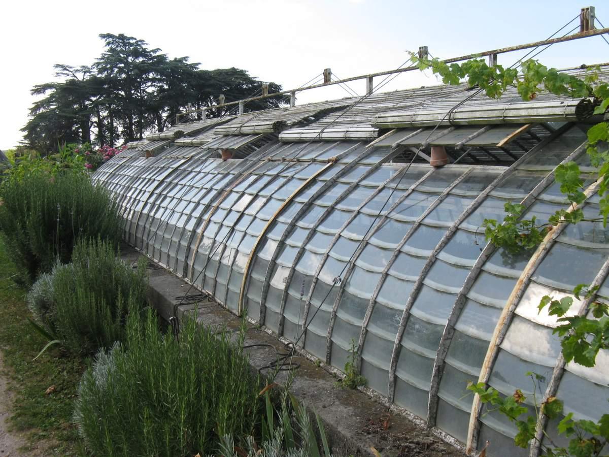Serre ancienne occasion images for Serres de jardin belgique