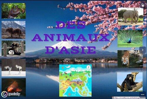 Les animaux d'Asie: le genially avec tous les documentaires