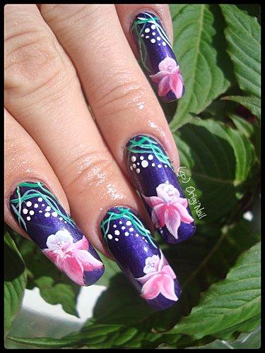 fleurs-etrangesss.jpg