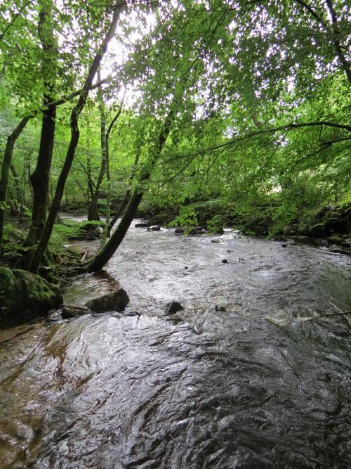 Escapade à Arfeuilles dans l'allier (3) La cascade