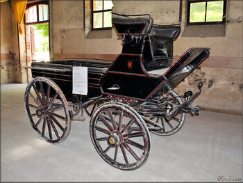 Photos véhicules hippomobiles : la dresseuse (Haras de Vendée)