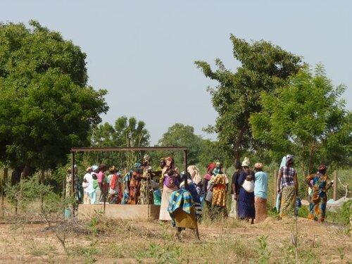 L'association des femmes pour le jardin de maraîchage
