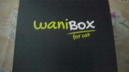 wanibox for cat