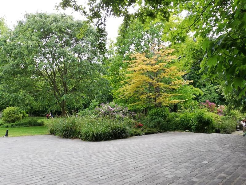 parc de charentonneau - rhododendrons et azalées